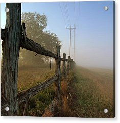 Misty Morning Acrylic Print by Cindy Rubin