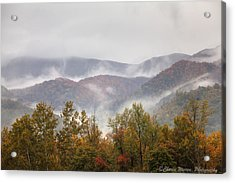 Misty Morning I Acrylic Print by Charles Warren