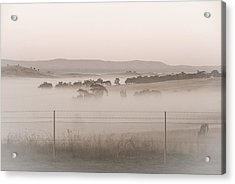 Misty Morning In The Country 2 Acrylic Print