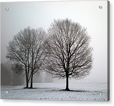 Acrylic Print featuring the photograph Misty Morning by Penny Hunt