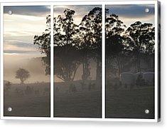 Misty Morning Triptych Acrylic Print
