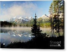 Misty Reflections Acrylic Print by Frank Townsley