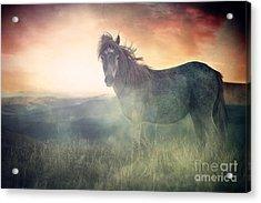Misty Sunset Acrylic Print by Lee-Anne Rafferty-Evans