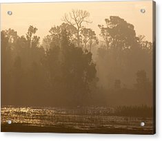 Misty Wetlands Acrylic Print