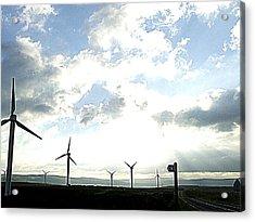 Misty Windmills Acrylic Print by Rusty Woodward Gladdish