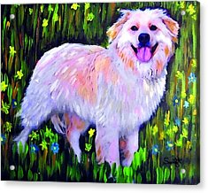 Mixed Breed Dog Acrylic Print by Char Swift