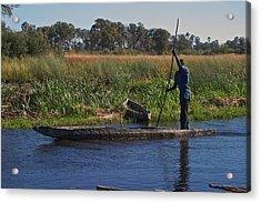 Mokoro Botswana Acrylic Print