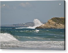 Acrylic Print featuring the photograph Monarch Wave by Johanne Peale