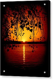 Monitor Bay Acrylic Print by Jennifer St Pierre