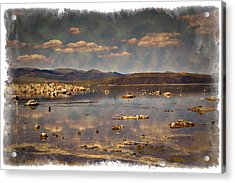 Mono Lake - Impressions Acrylic Print by Ricky Barnard
