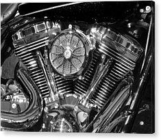 Acrylic Print featuring the photograph Monochrome Vee by Samuel Sheats