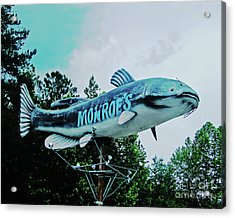 Monroe's Catfish  Acrylic Print by Lizi Beard-Ward