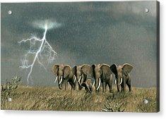 Monsoon On The Serengeti Acrylic Print by Walter Colvin