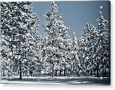 Acrylic Print featuring the photograph Montana Christmas by Janie Johnson