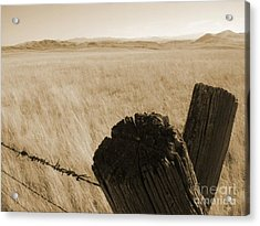 Acrylic Print featuring the photograph Montana Vista by Bruce Patrick Smith