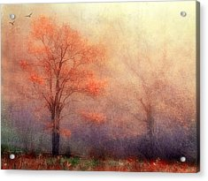 Moods Of Autumn Acrylic Print by Darren Fisher