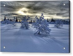 Acrylic Print featuring the photograph Moody Snow Scene by Michele Cornelius