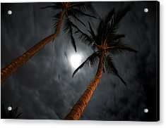 Moon And Palms Acrylic Print by George Crawford