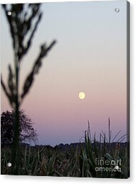 Acrylic Print featuring the photograph Moon by Andrea Anderegg