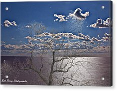 Moon Over The Water Acrylic Print by Bill Perry