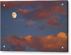 Moon Sunset Acrylic Print by James BO  Insogna