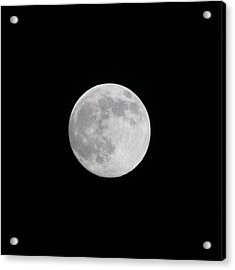 Moon Time Acrylic Print by Cathie Douglas
