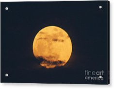 Acrylic Print featuring the photograph Moon by William Norton