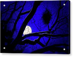 Acrylic Print featuring the photograph Moon Wood  by Richard Piper