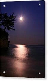 Moonlight (cormorant Point) Acrylic Print by Copyright Crezalyn Nerona Uratsuji