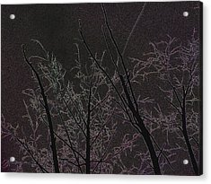 Moonlight I Acrylic Print