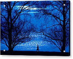 Acrylic Print featuring the photograph Moonlight Stroll by Mike Flynn