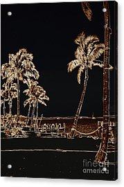 Moonlit Palms Acrylic Print by Rene Triay Photography