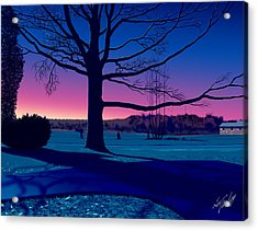 Moonlit Scene Acrylic Print by Lee Farley