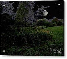Moonrise In Flossmoor Forest Acrylic Print by Cedric Hampton