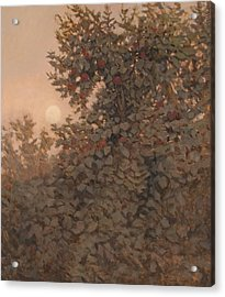 Moonrise In The Orchard Acrylic Print by Peter  Campbell