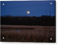 Acrylic Print featuring the photograph Moonrise by Steven Clipperton