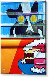 Mooooooo Acrylic Print by Chris Anderson