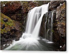 Moose Falls In Yellowstone National Park Acrylic Print