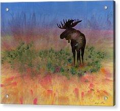 Moose On The Tundra Acrylic Print by Carolyn Doe