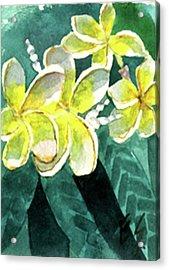 More Plumeria Acrylic Print