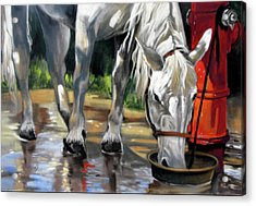 Acrylic Print featuring the painting Morning Bath Now Breakfast by Rae Andrews