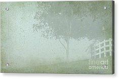 Morning Fog Acrylic Print by Judi Bagwell
