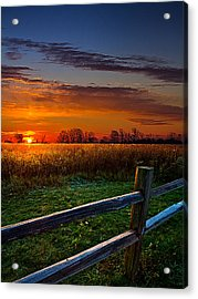 Morning Fresh Acrylic Print by Phil Koch