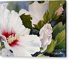 Morning Gift Sold Acrylic Print