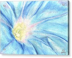 Morning Glorious Acrylic Print by Iris M Gross