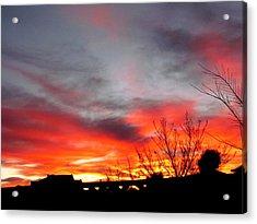 Morning Glory Acrylic Print by Joyce Woodhouse