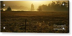 Morning Glow Acrylic Print by Terrie Taylor