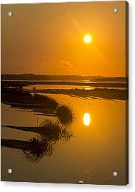 Morning Gold Acrylic Print by Alan Raasch