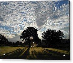 Morning Magic Acrylic Print by Sheila Silverstein