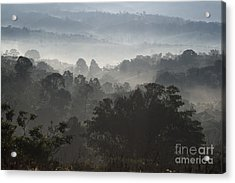 Morning Mist In Panama's Highlands Acrylic Print by Heiko Koehrer-Wagner